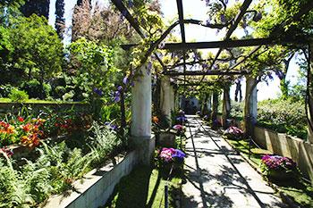 The garden at villa San Michele